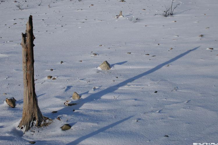 Солнечные часы - дерево коряга снег зима никель гора на горе фото фотосайт