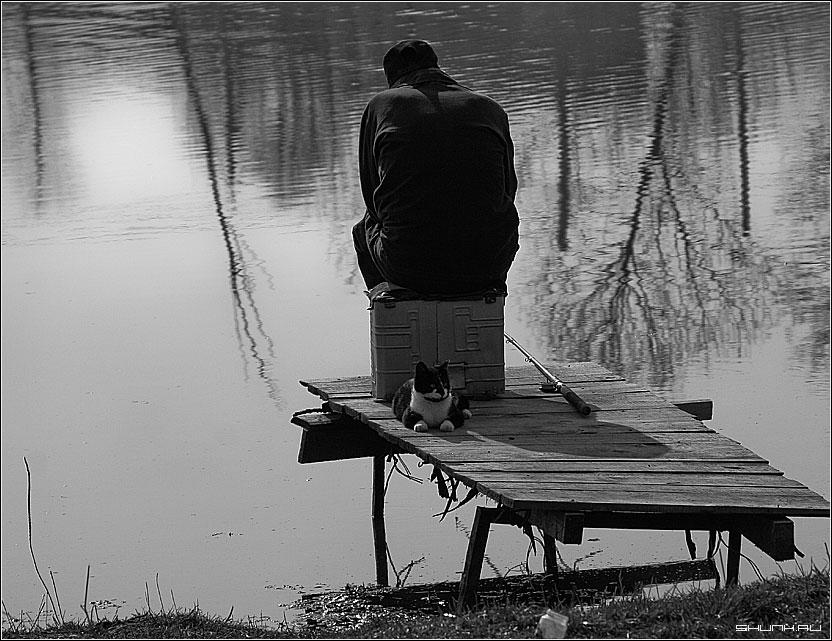Рыбак и кот - мост река рыбак удочка кот фото фотосайт