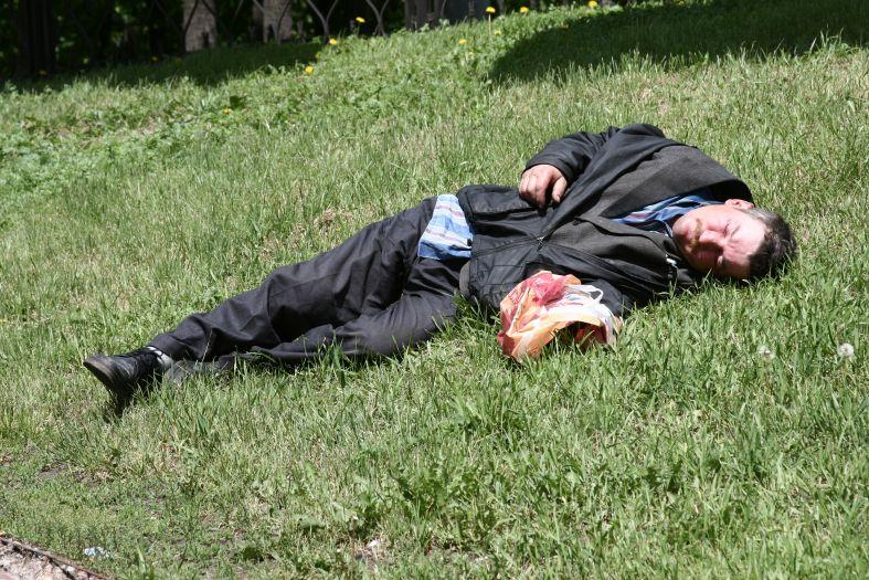 Я на солнышке ляжу - бомж на траве фото фотосайт
