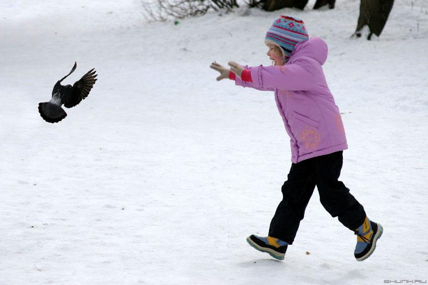 Птица счастья - голубь ребенок фото фотосайт