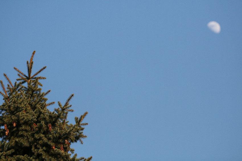 Про Луну, небо и иголки - собственно луна небо ... фото фотосайт