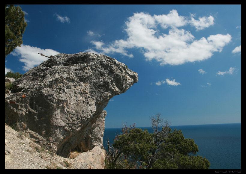 Пантера перед прыжком - горы небо крым фото фотосайт