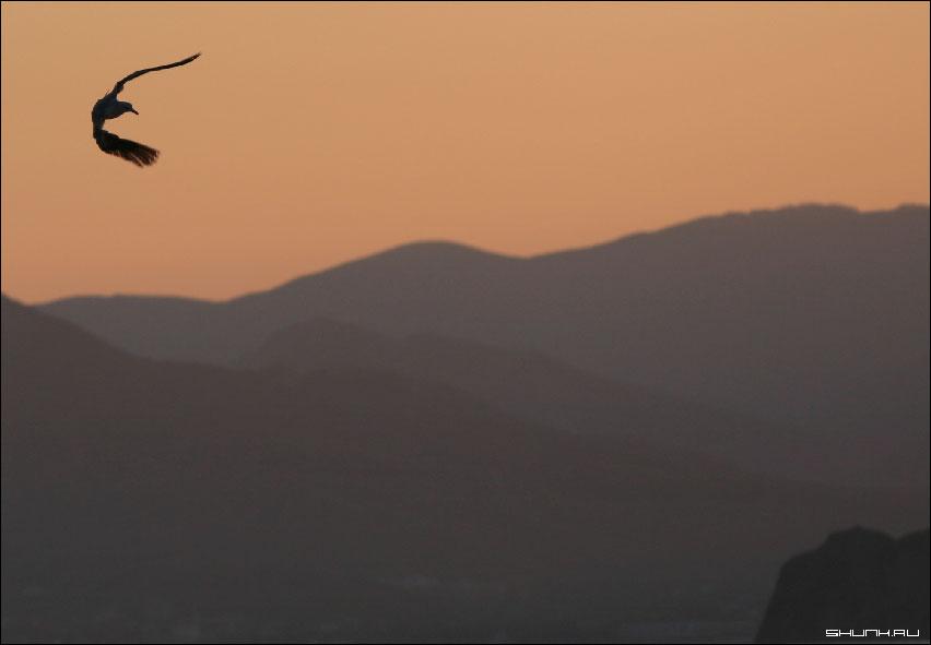 Манервы - закат крым море небо фото фотосайт