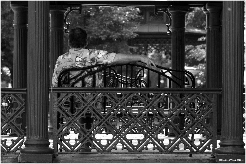 В тени беседки - лавочка беседка сад эрмитаж фото фотосайт