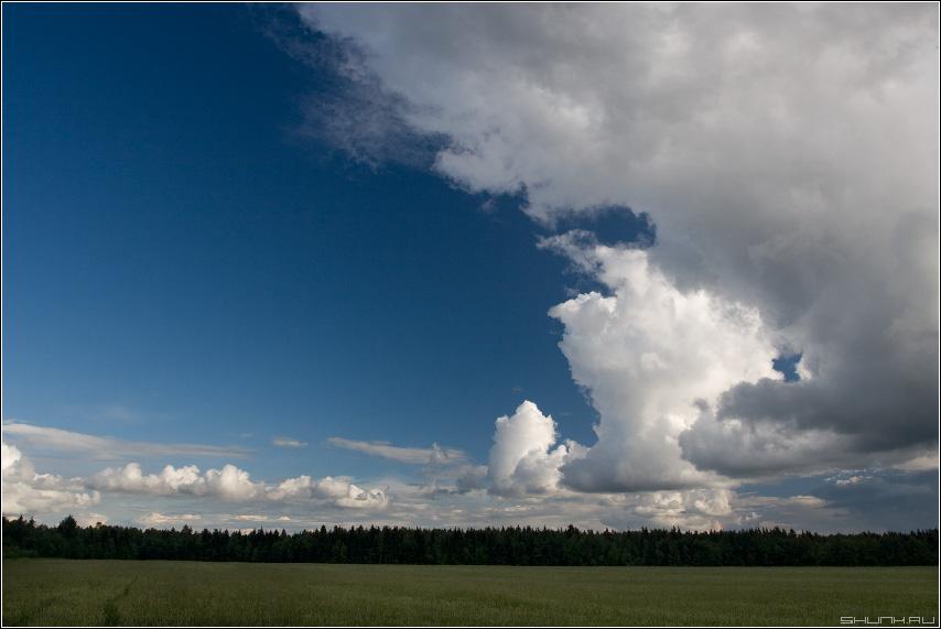 Шли тучи однажды - небо поле лето красота фото фотосайт