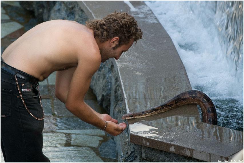 Купание удава - манежная площадь манежка удав мужик фото с удавом вода фонтан водопад фото фотосайт
