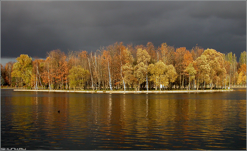 Остров - остров осень небо вода пруд деревья фото фотосайт