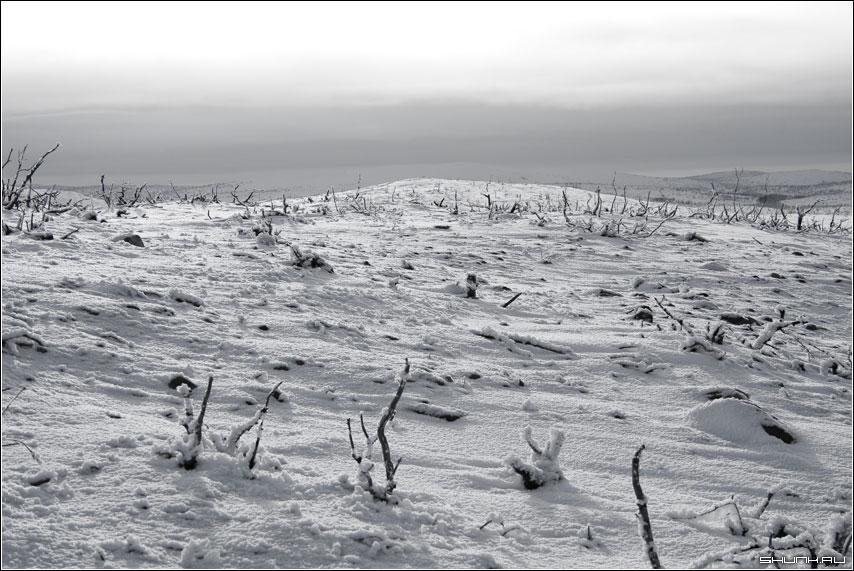 Окрестности - никель холмы чб чернобелое фото фотосайт