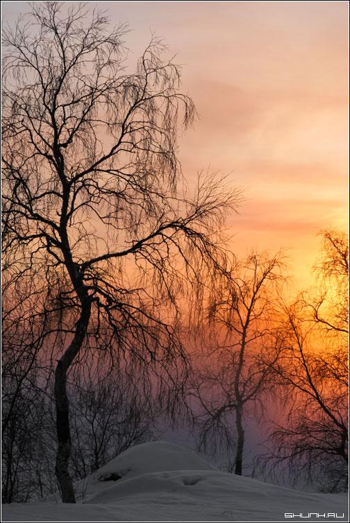 Туманный закат - никель окрестности фото фотосайт