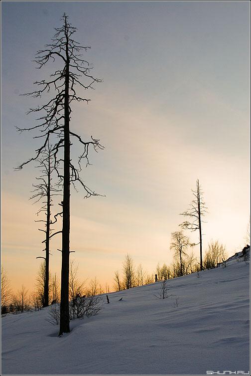 Кислотный закат - окрестности никеля фото фотосайт