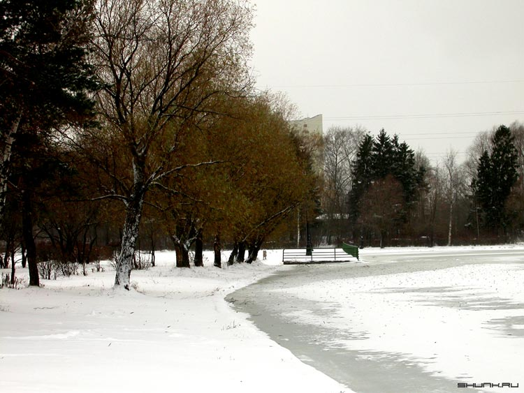 Листопад - листья снег зима пруд лед фото фотосайт