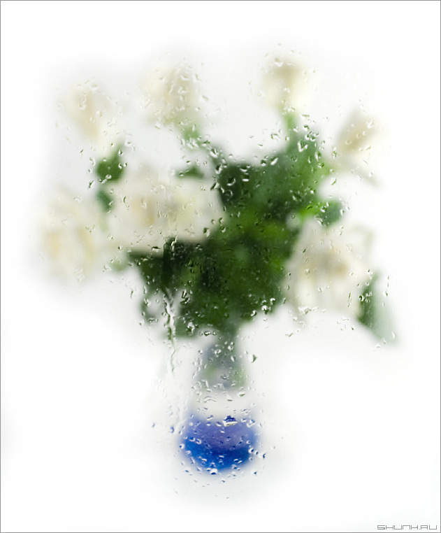 Букет в слезах - розы букет ваза стекло вода фото фотосайт