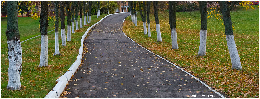 Без названия - деревья белила осень парк фото фотосайт