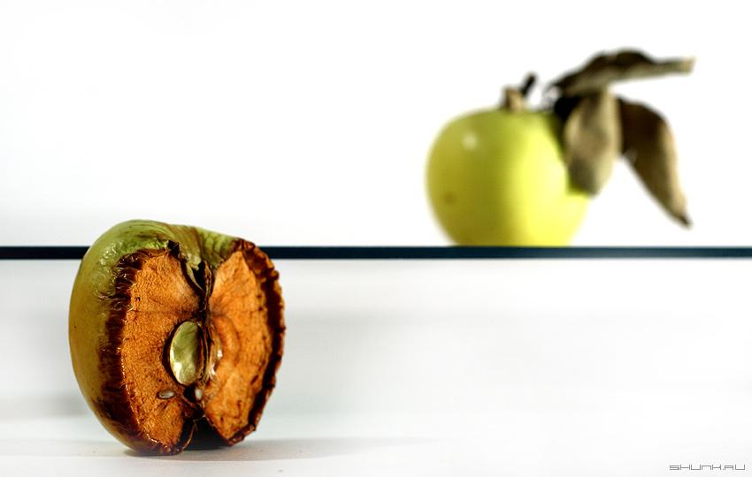 Сублимация - яблоко яблоня натюр стекло лист фото фотосайт