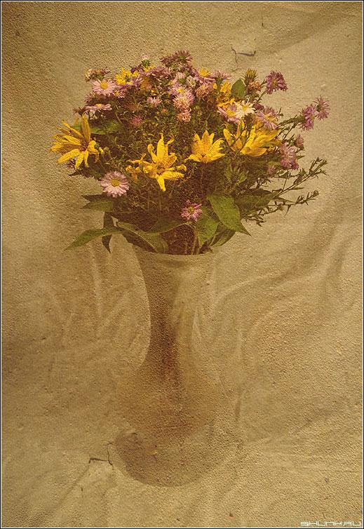 Последние цветы уходящего года - натюрморт букет полевые цветы ваза фотошоп фото фотосайт