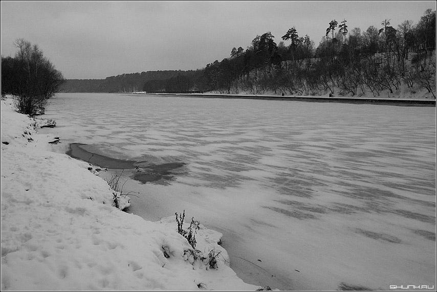 ЧБ пейзаж - зима снег пейзаж серебрянный бор фото фотосайт