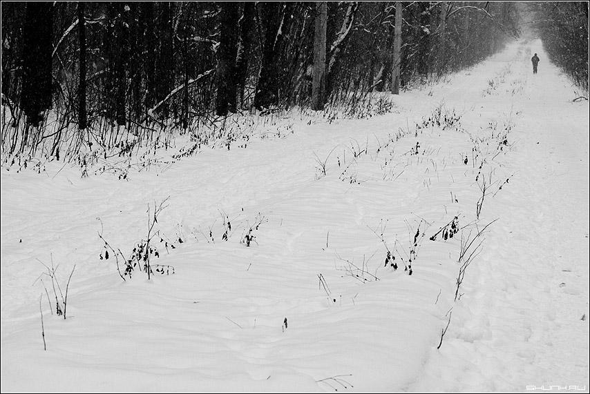 Утренняя пробежка - парк зима снег человек спорт пробежка фото фотосайт