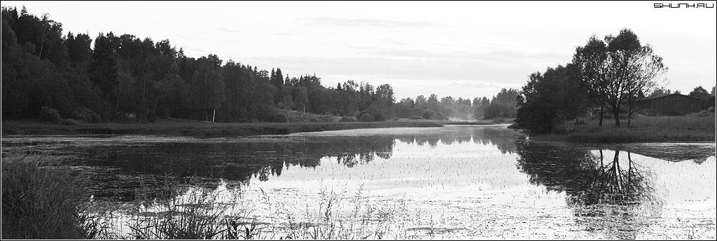 Туманы - лето чб река пруд лес туман фото фотосайт
