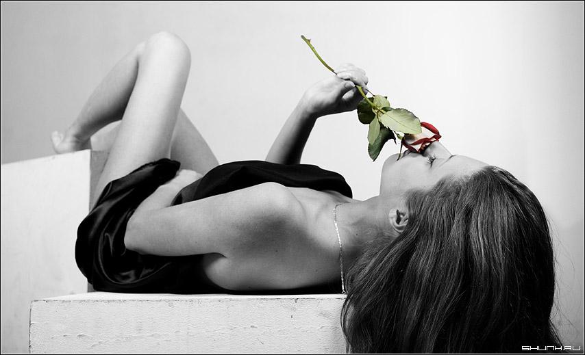 С розой.. - студия волосы чб роза цвет кубики обои фото фотосайт