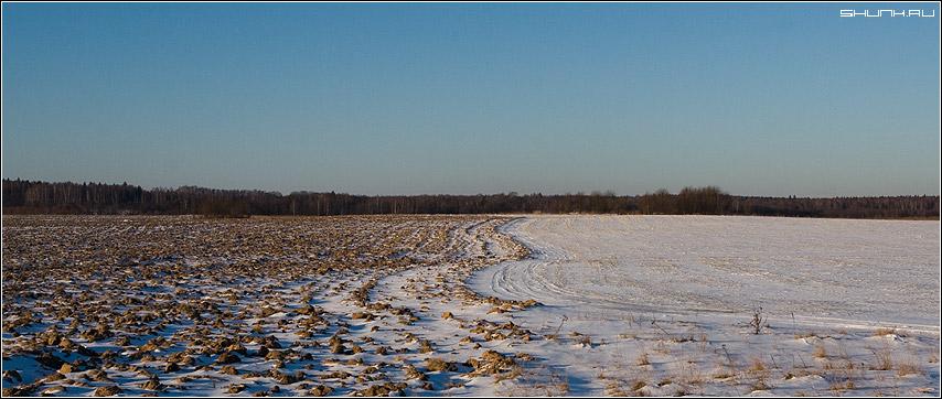 Непаханное поле... - зима январь поле лес деревня фото фотосайт
