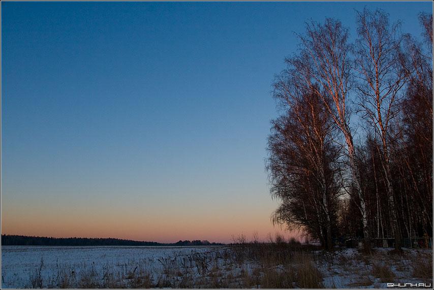 Рассвет (обратная сторона неба) - небо береза рассвет фото фотосайт