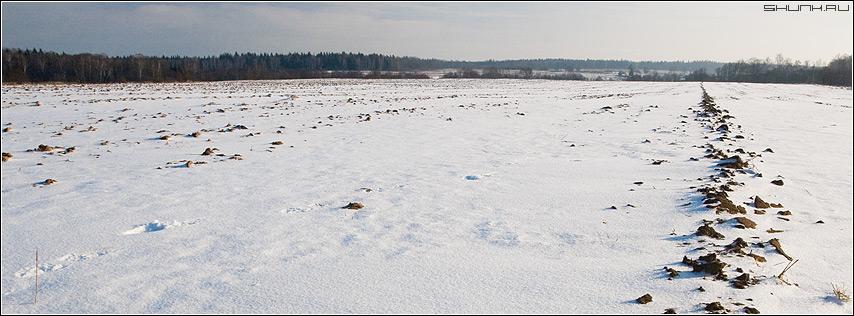 Борозда - поле деревня шустиково зима январь фото фотосайт