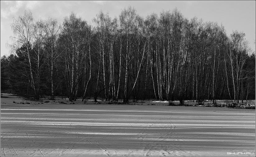 Полосы - лес лед река тени полоски фото фотосайт