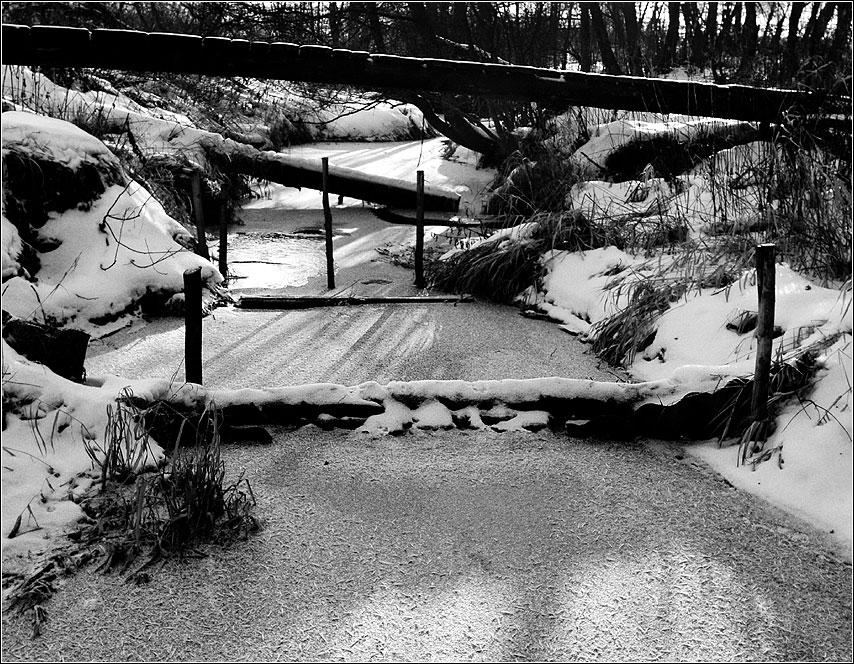Каскады реки - рубцово река мост родник зима чернобелое фото фотосайт
