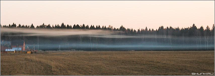 Туман - поле лес строения осень туман фото фотосайт