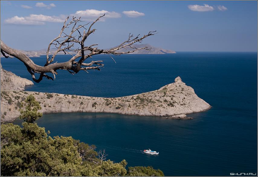 Про пароходик - крым море черное заповедник кораблик ветка горы фото фотосайт