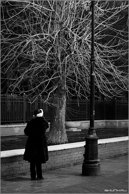 Вечерний разговор... - столб дерево чб чернобелое шапка фото фотосайт