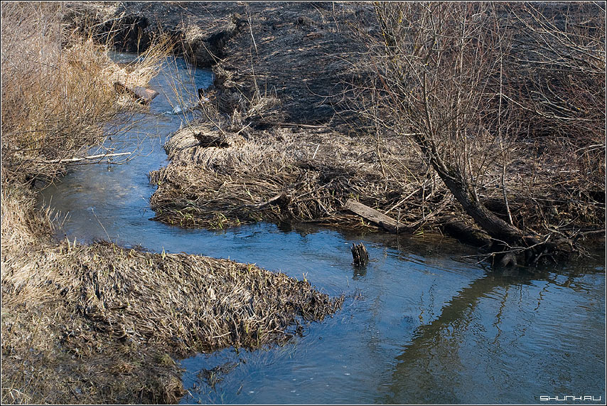 Весенняя речушка - весна ручей трава талая вода фото фотосайт