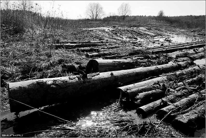 Мои любимые лечебные грязи - грязь дорога бревна лужи весна ручьи черно-белое фото фотосайт