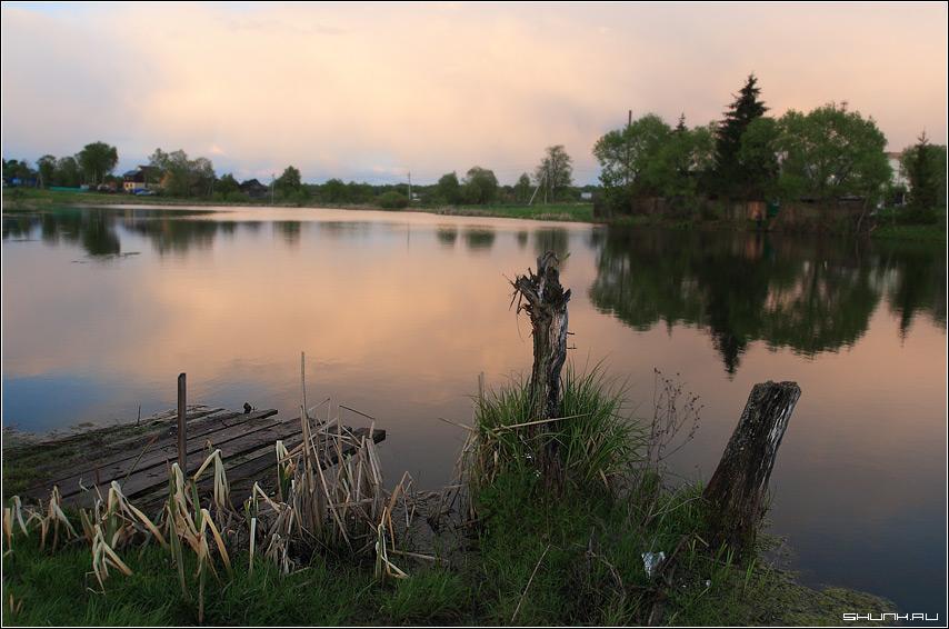 У мосточка - шустиково деревня пруд коряга закат небо отражение елка фото фотосайт