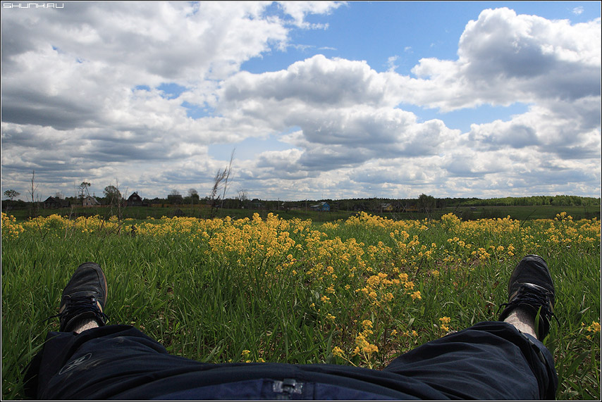 ВОТ МОЯ ДЕРЕВНЯ - заголовок деревня крюково поле цветы горизонт небо весна ноги отпуск я фото фотосайт