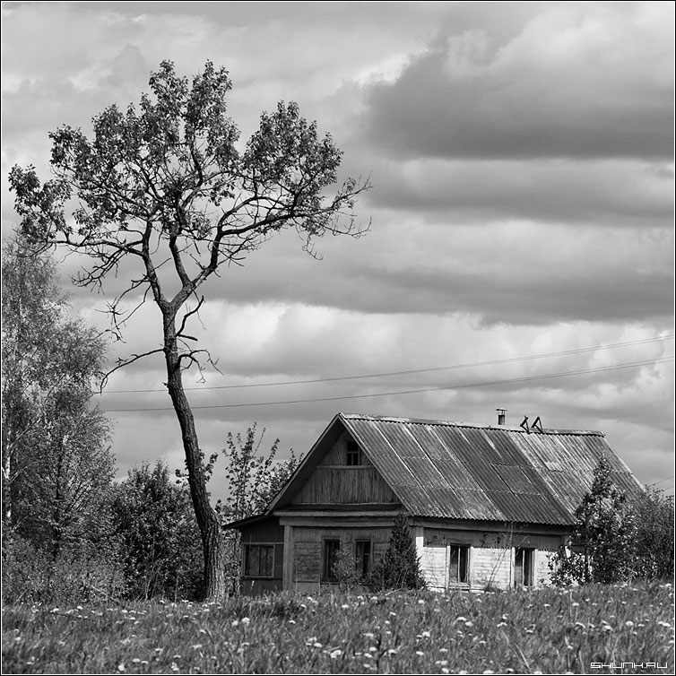 ...осталось сына - дом дерево квадрат небо чб чернобелое фото фотосайт