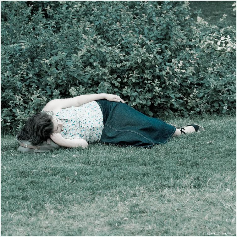 Сон - квадрат манежка она кусты сон фото фотосайт