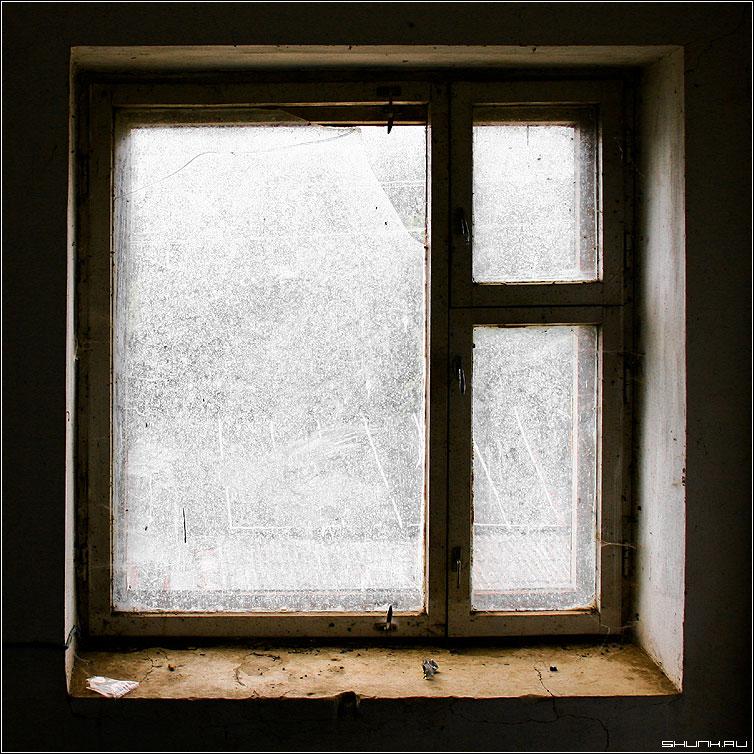 Окно - окно мухи грязь квадрат цвет window фото фотосайт