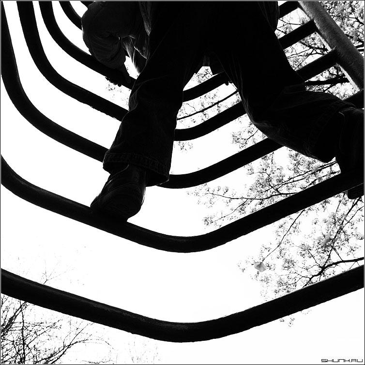 Выше чем деревья - ребенок площадка лестница деревья квадрат чб черно-белое фото фотосайт