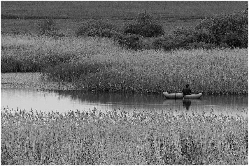Про рыбачка - рыбхоз рыбак камыш река лодка чернобелое фото фотосайт