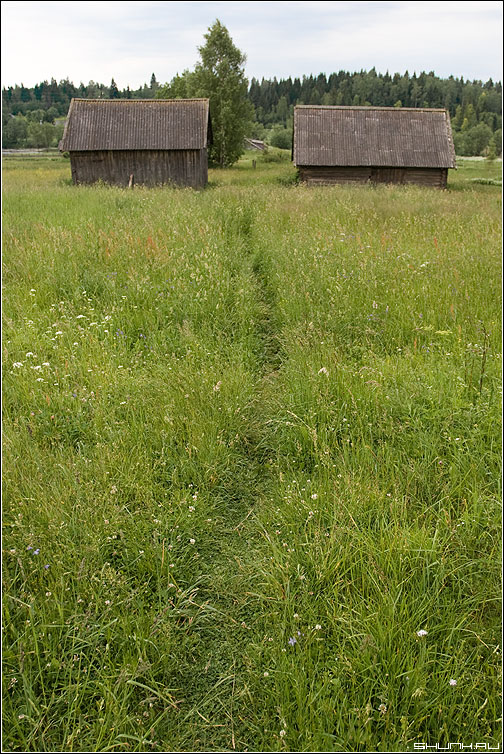 Тропинка - деревня сарай лето травка цветочки небо фото фотосайт