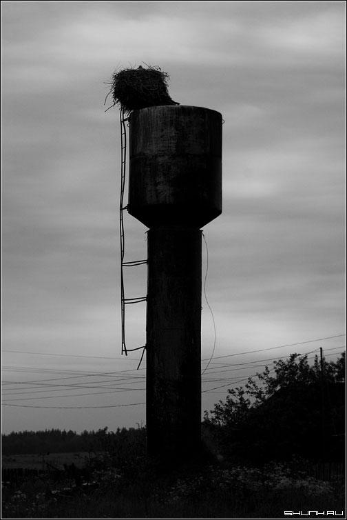 Аист спит, фотограф идет... - гнездо аист водонапорная башня вечер закат фото фотосайт