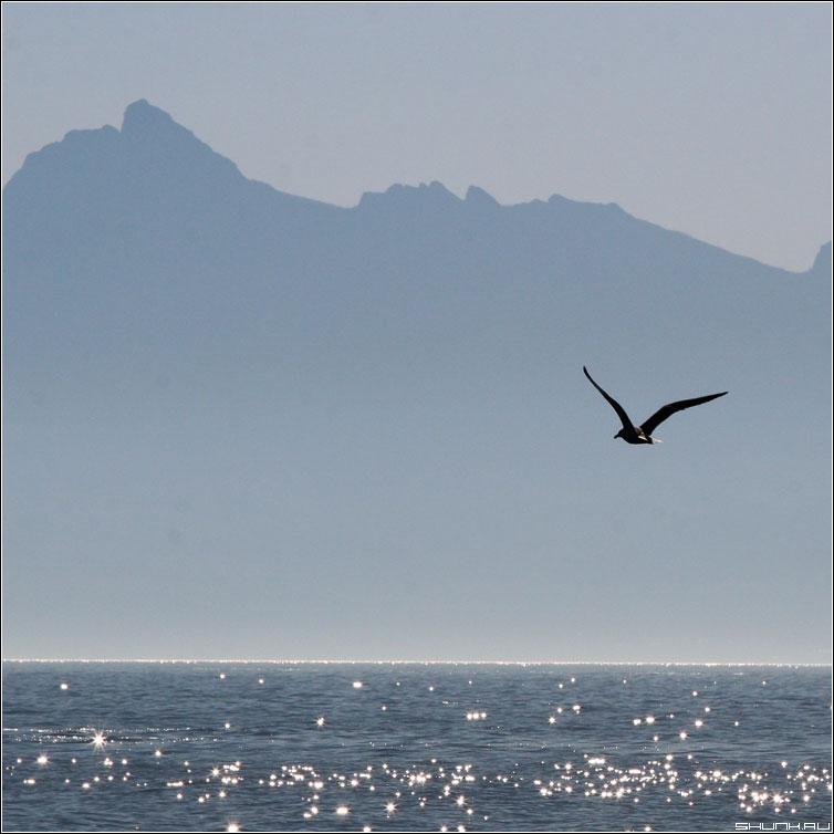 Трафарет Кара Дага - чайка горы крым кара-даг ностальгия квадрат фото фотосайт