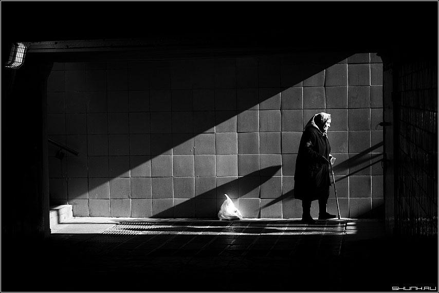 Исход - бабушка переход свет чернобелое фото фотосайт