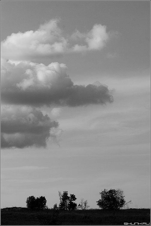 Три плюс три - кустики облака черно-белое небо деревня фото фотосайт