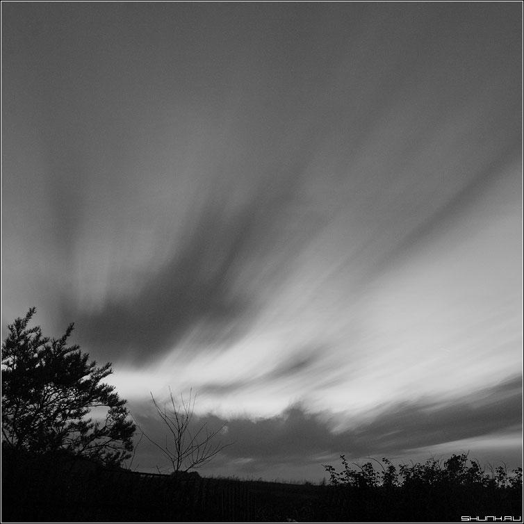Вечер - чернобелая квадрат небо выдержка кусты облака фото фотосайт