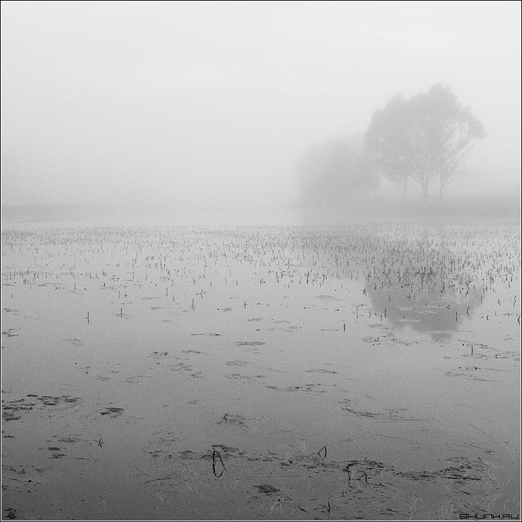 Вариант - чернобелая квадрат туман озеро деревня таложня фото фотосайт