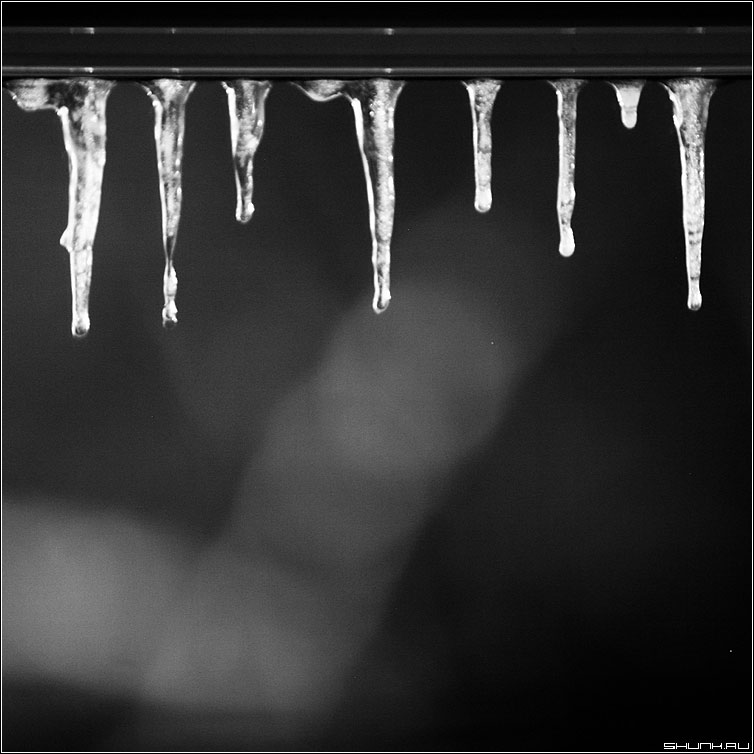 Ледяная мелодия - чернобелая квадрат сосули сосульки зима ночь фото фотосайт