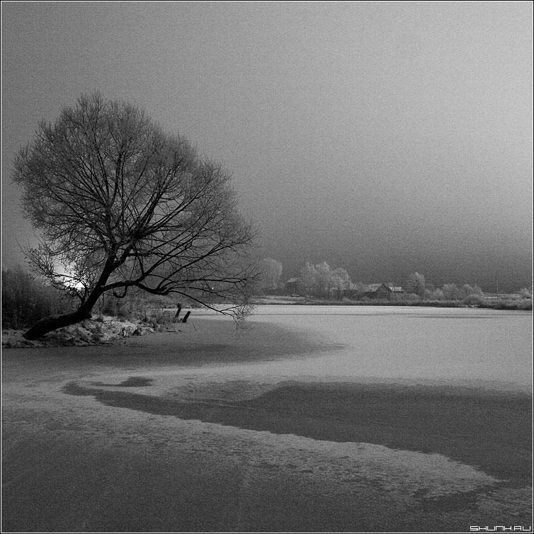 Ледяная ночь - чернобелая квадрат ночь зима деревня ветла свет фото фотосайт