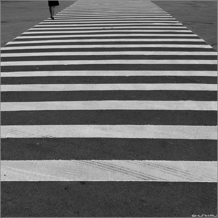 Полосатость - переход ноги девушка полосы квадрат чернобелая фото фотосайт